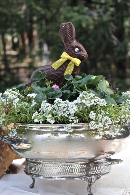 Fresh plants, a few spreckled eggs & a chocolate bunny in a silver serving dish for an Easter centerpiece.