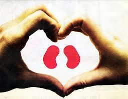 Tips to Keep Your Kidney and Heart Healthy