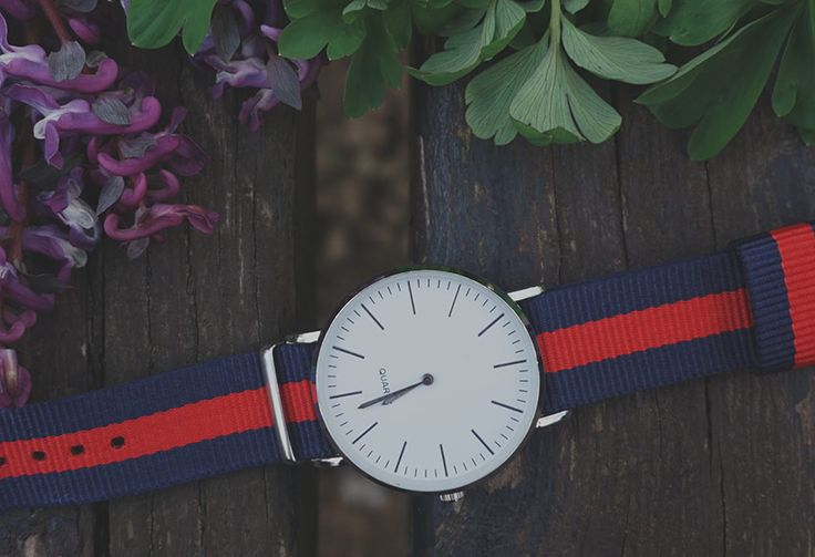 Download for free unique stock image of Stripped colour watch, flower and green leaves on the wooden bench. Free commercial photo. No attribute required.