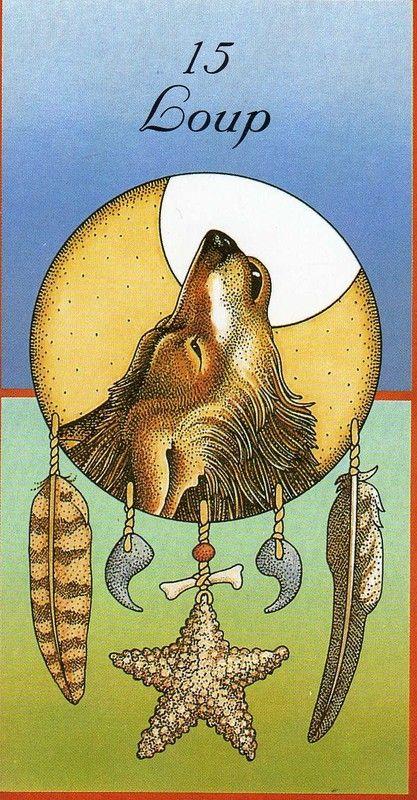 Coyote Medicine   Trickster