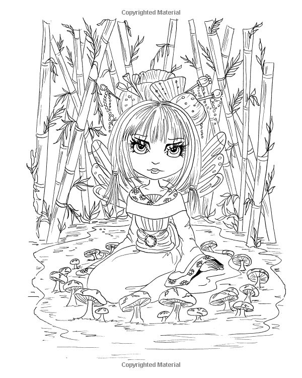 amazoncom lacy sunshines in the land of fae and whimsies coloring book volume