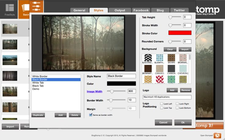 Blogstomp.   Optimize, sharpen and watermark image and build custom blog collages quickly