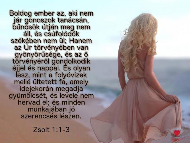 """""""Boldog ember az, aki nem jár gonoszok tanácsán, bűnösök útján meg nem áll, és csúfolódók székében nem ül."""" (Zsolt. 1.1)"""