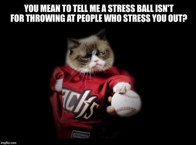 Stress Ball Grumpy Cat Grumpy Cat Cats Grumpy