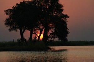 Eden Qigong Massage, Sunset on the Chobe River, Botswana