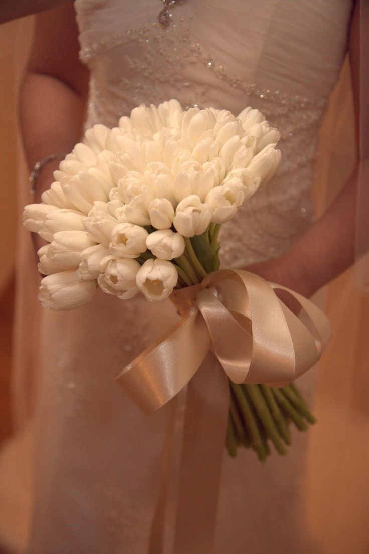 White tulips with ivory satin ribbon
