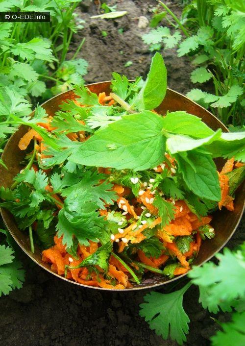 Простейший витаминный салат опять же из любимого «Савера»Простой, но удивительно вкусный и даже изысканный я бы сказала.А как хороша кинза прямо с грядки,…