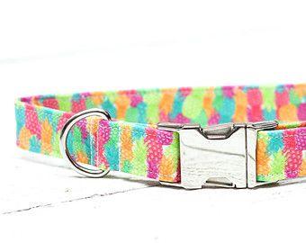Rosa Collar de perro de lunares lunares de color por ZaleyDesigns