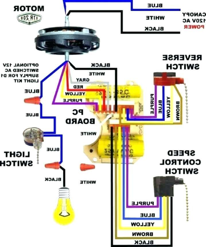 25 Wiring Diagram For 3 Way Switch Ceiling Fan Bookingritzcarlton Info Ceiling Fan Switch Ceiling Fan Wiring Ceiling Fan Pull Chain