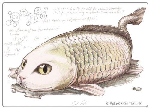 It's a Catfish! This time around, for his colour pencil series entitled: SaMpLeS FrOm ThE LaB, illustrator Rob Foote took a break from...