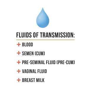 fluids of transmission - blood, semen(cum), pre-seminal fluid(pre-cum), vaginal fluid, breast milk