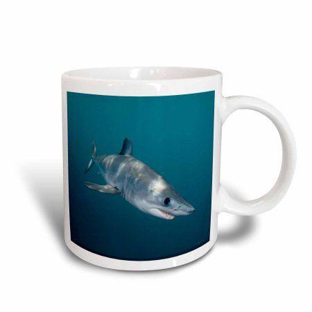 3dRose Shortfin Mako Shark, Isurus oxyrinchus, San Diego, California, USA, Eastern Pacific, Ceramic Mug, 11-ounce