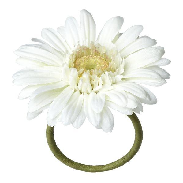 190 Best Gerber Daisy Images On Pinterest Wedding