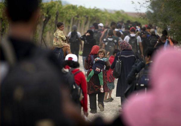 Siga las noticias sobre los refugiados sirios en nuestra página. Visite nuestra página y sea parte de nuestra conversación: http://www.namnewsnetwork.org/v3/spanish/index.php  #nnn #bernama #refugiados #siria #malasia #malaysia #news #noticias #greece #grecia #migrantes #europa #europe #migrants