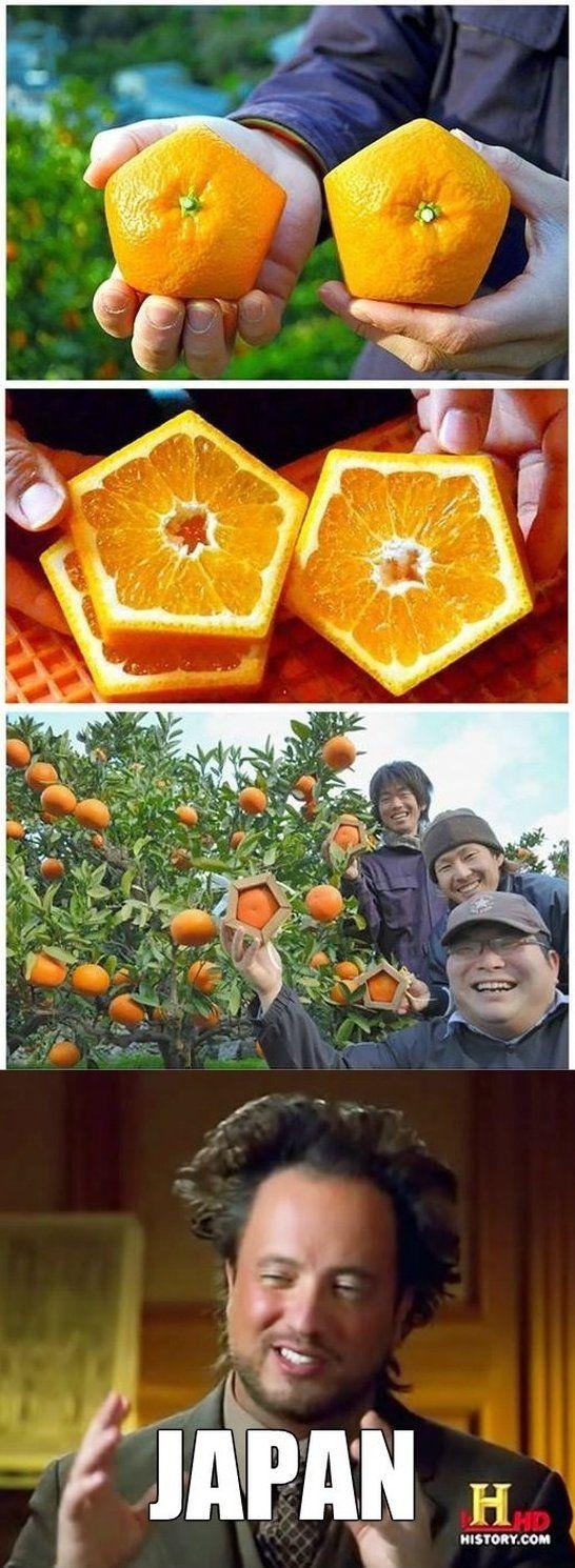 Meanwhile in Japan - www.meme-lol.com