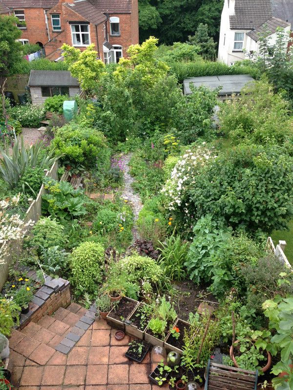 Alys Fowler's inspirational urban kitchen garden - the perfect informal mix of flowers, veg, fruit and herbs... and hens!