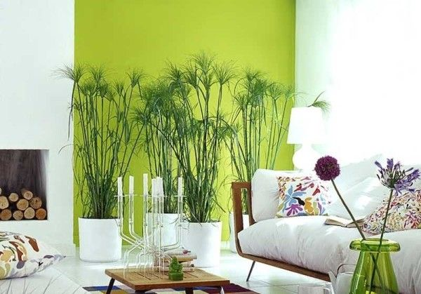 Indoor plant decor ideas - Little Piece Of Me
