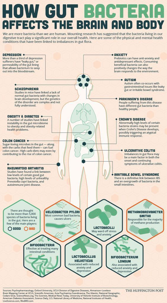 What The Bacteria In Your Gut Have To Do With Your Physical And Mental Health