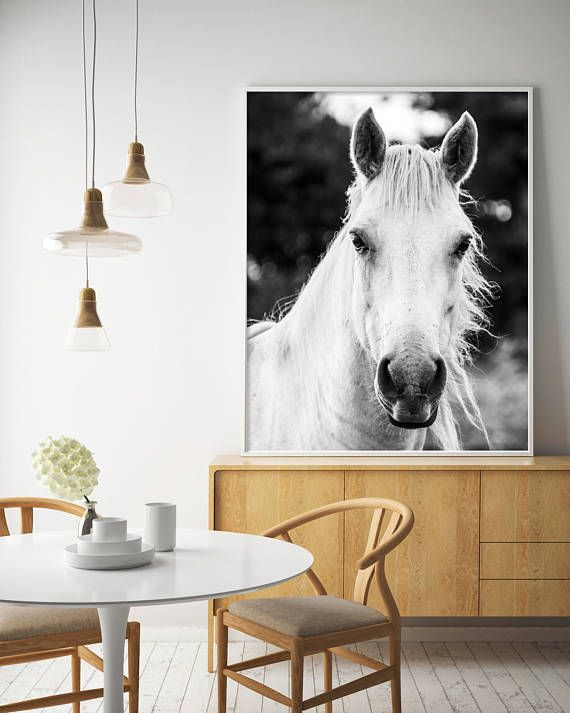 White Horse Horse Print Black and White Photography White