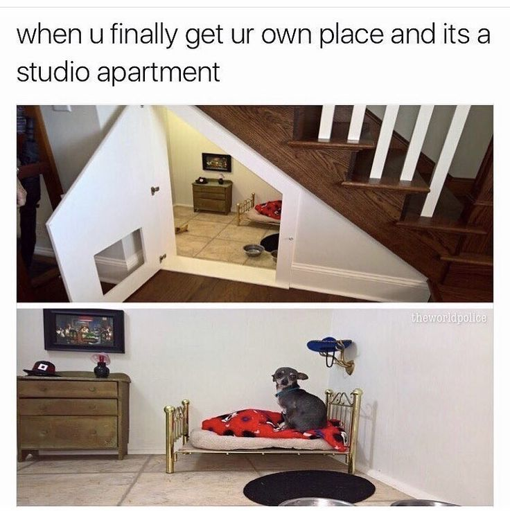 When you finally get your own place