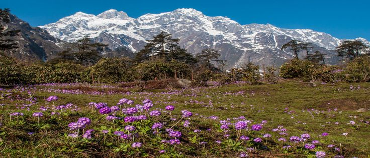 Sikkim - Discover a mystical wonderland of spectacular natural beauty.