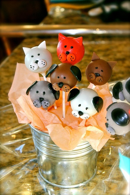 Cute puppy and kitty cake pops