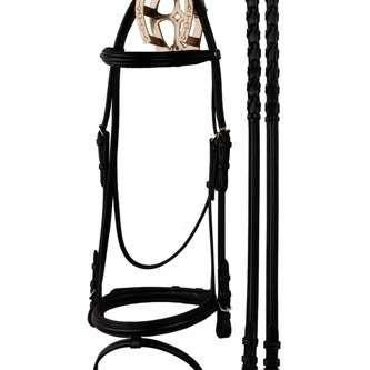 Padded Dressage Bridle with Flash