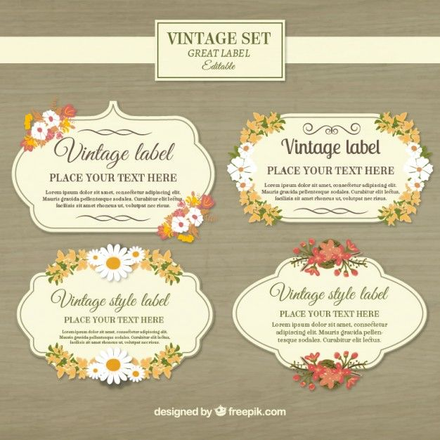 Vintage labels collection Free Vector