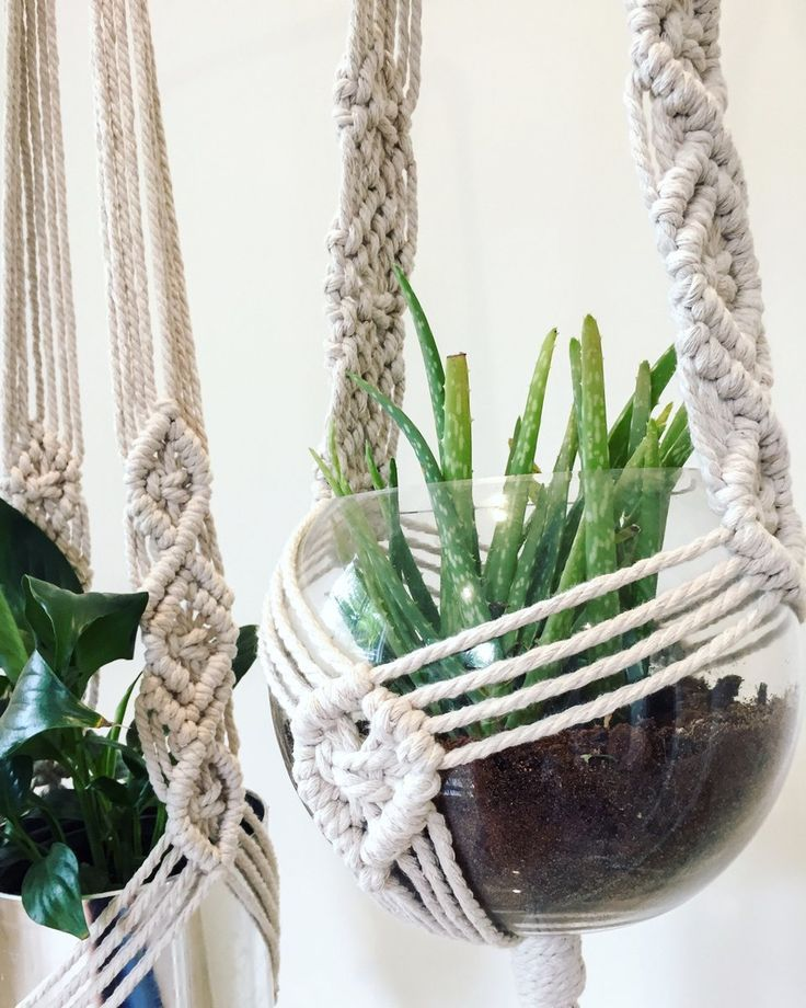 This Diamond Macrame Plant Hanger Design Is Made Of A 5mm 100 Natural Cotton Cord A Great A Macrame Plant Hanger Macrame Plant Hanger Tutorial Plant Hanger