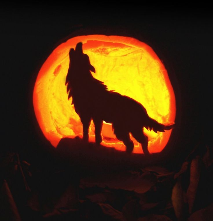 57 best halloween pumpkin carvings images on pinterest halloween deviantart more like pumpkin carving howling wolf by pronofoot35fo Choice Image
