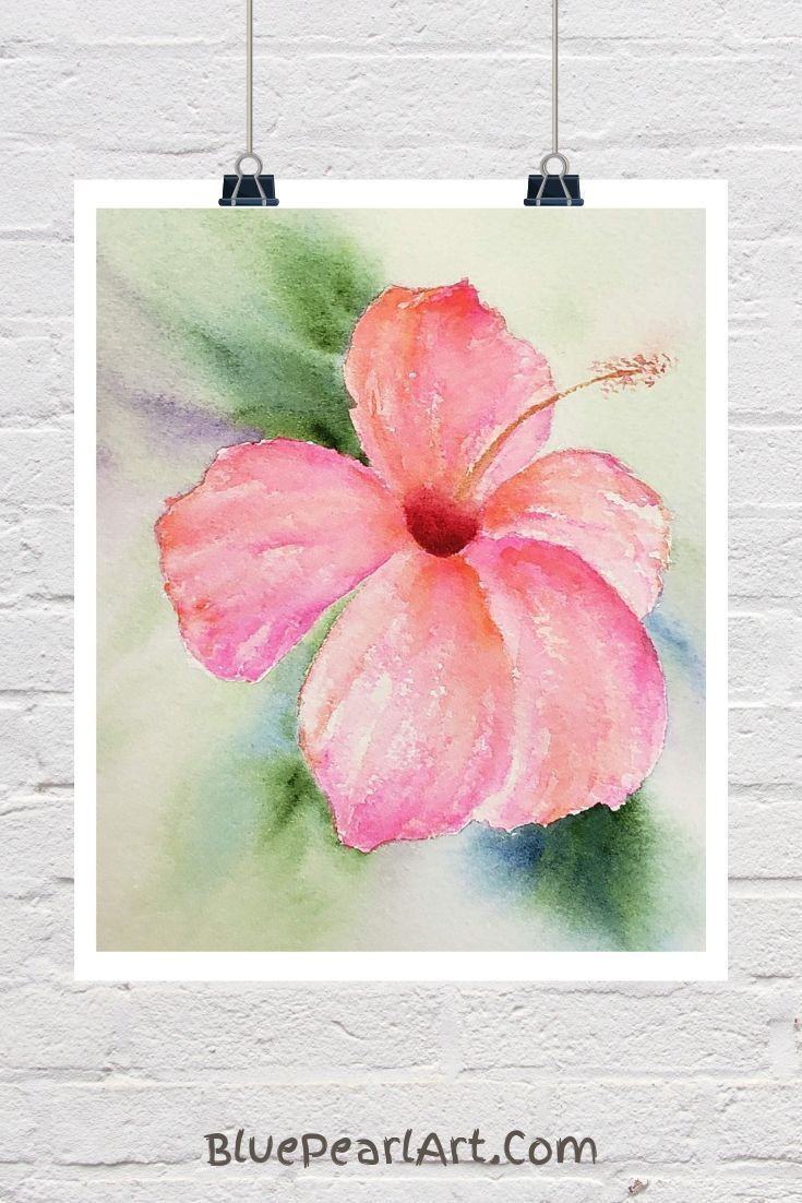 Hibiscus Watercolor Flower Paintings Check Out Our Store For More