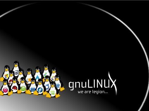 Las 7 mejores distribuciones de GNU/Linux del2013 ¿Y ustedes que opinan?