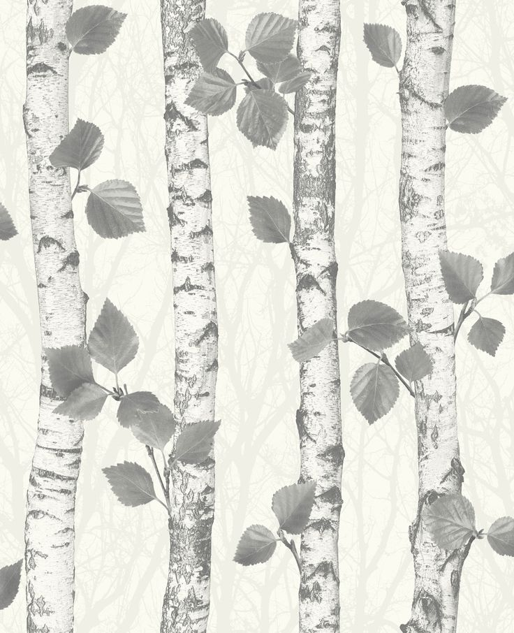 Birchwood Charcoal wallpaper by Albany