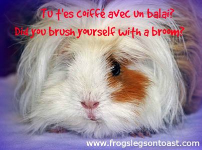 Learn charming French expressions, slang and rude words on http://www.frogslegsontoast.com