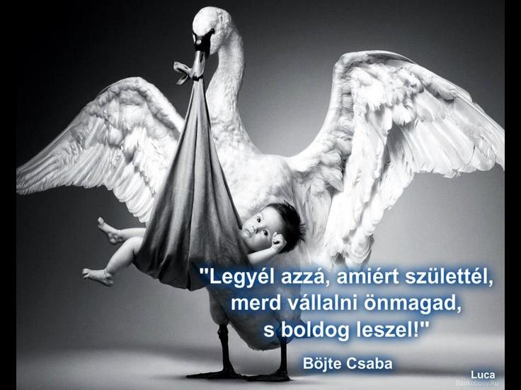 Böjte Csaba tanácsa önmagad vállalásáról. A kép forrása: Mondd, hogy…