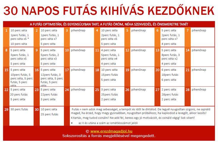 30-napos-futo-terv-kezdoknek