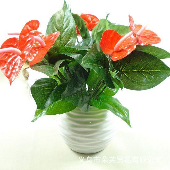 Антуриум, зеленый горшках антуриум цветы крытый зеленые растения балкон офисные настольные искусственные цветы бонсай