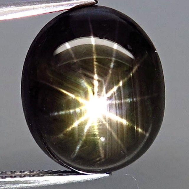 20.62 Carat 12 Ray Thailand Black Star Sapphire - Gorgeous star  sapphire, cabochon sapphire