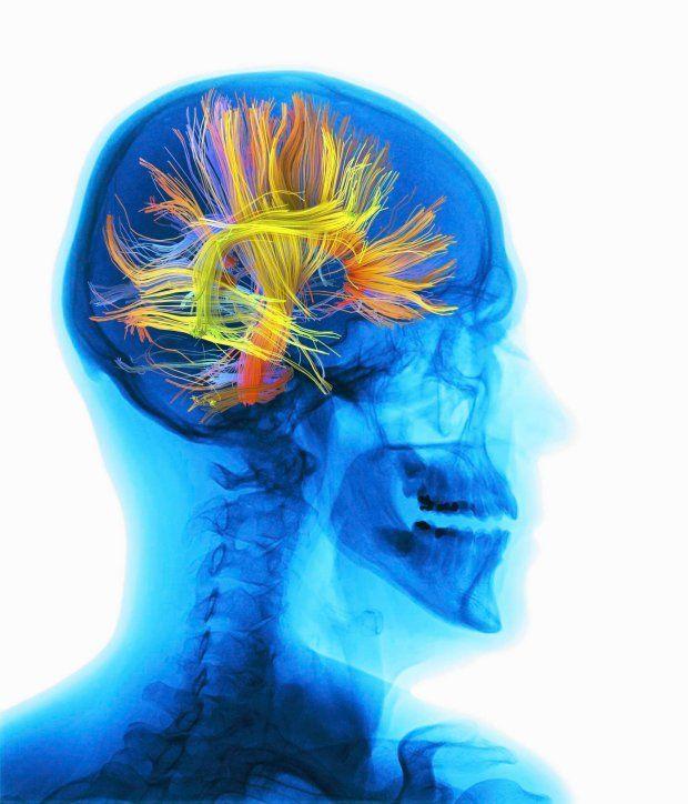 Jak się uczyć, żeby się nauczyć i nie zwariować?  http://www.pinterest.com/beataczyzewska5/neurodydaktyka/