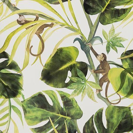 Tropical Monkey print wallpaper. Clarke and Clarke Colony Collection - Monkey Business Wallpaper