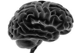 Test Your Memory for Alzheimer's (5 Best Memory Tests)