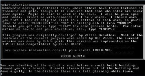 Colossal Cave Adventure (1975)  Colossal Cave Adventure (1975) was known as the first computer adventure game that eventually brought storylines into games. It had no graphical interface, only textual. The draw of the game was its story-rich content and the interactivity involved. Players type in commands indicating what they wish to do next in each situation. Depending on the choices the players make, the story unfolds in different ways with different endings.