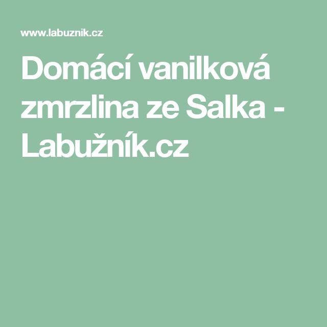 Domácí vanilková zmrzlina ze Salka - Labužník.cz