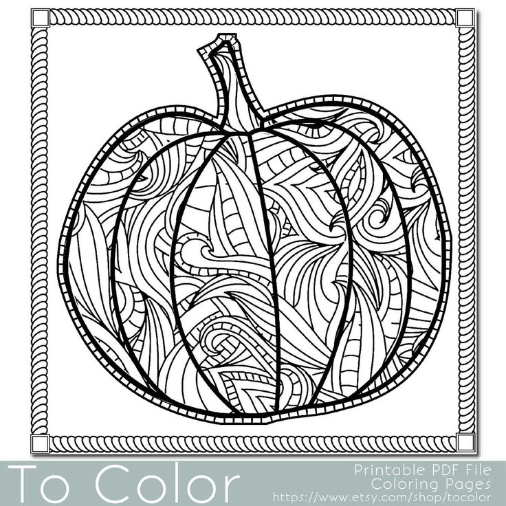 Pumpkin Coloring Page for Grown Ups - Instant Download