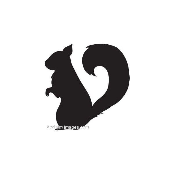 Clip Art of a Squirrel Silhouette found on Polyvore