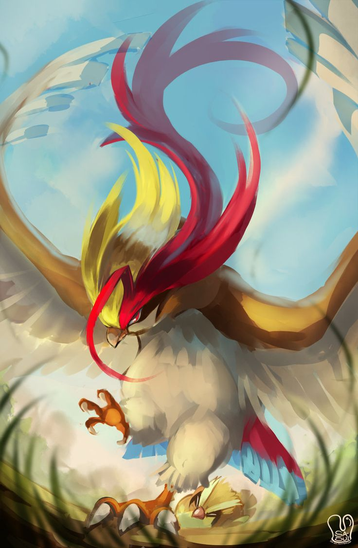 Here's a Mega Pidgeot. Now that I see this, every common bird Pokémon should get a Mega.