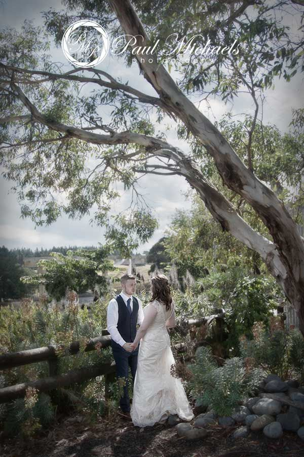 Under the trees at Sudbury farm.  #wedding #photography. PaulMichaels www.paulmichaels.co.nz photographers