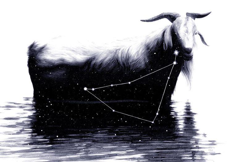 Image result for Chris Koehler Art & Illustration zodiac