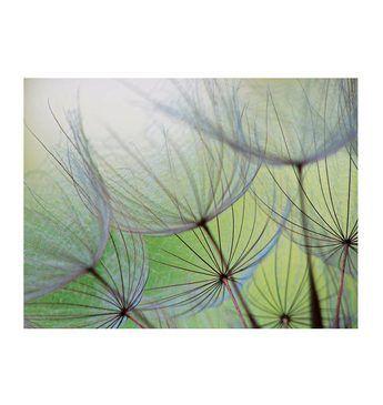 Home affaire Glasbild »Dandelion Seed«, Größe: 80/60 cm Jetzt bestellen unter: https://moebel.ladendirekt.de/dekoration/bilder-und-rahmen/bilder/?uid=970c4363-ff2f-5887-b8e9-517c2bfb4060&utm_source=pinterest&utm_medium=pin&utm_campaign=boards #bilder #rahmen #dekoration