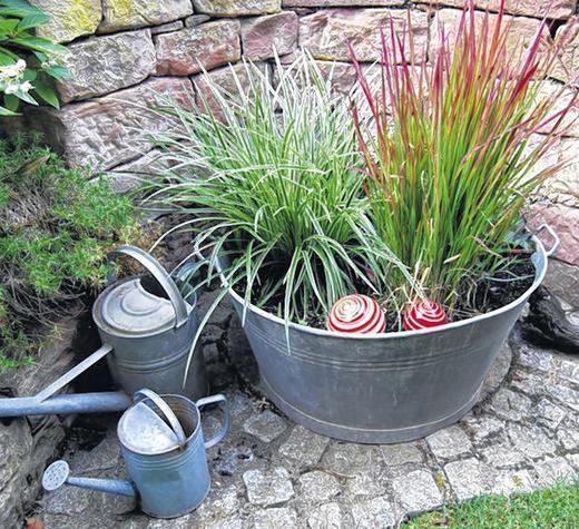 Stunning Bildergebnis f r zinkwanne bepflanzen